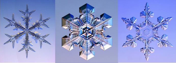 Real snowflakes photographed by Kenneth G. Libbrecht (snowcrystals.com).
