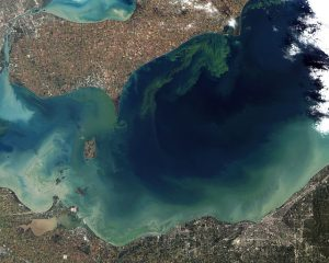 """Toxic Algae Bloom in Lake Erie"" by Jesse Allen and Robert Simmon - NASA Earth Observatory. Licensed under Public domain via Wikimedia Commons."