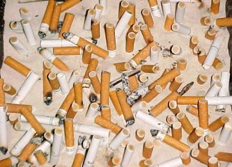 Discarded cigarette butts, the most common environmental waste product, attract egg-laying mosquitoes. (Wikimedia Commons)