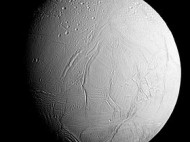 Europa and Enceladus: Searching for Life on Icy Moons