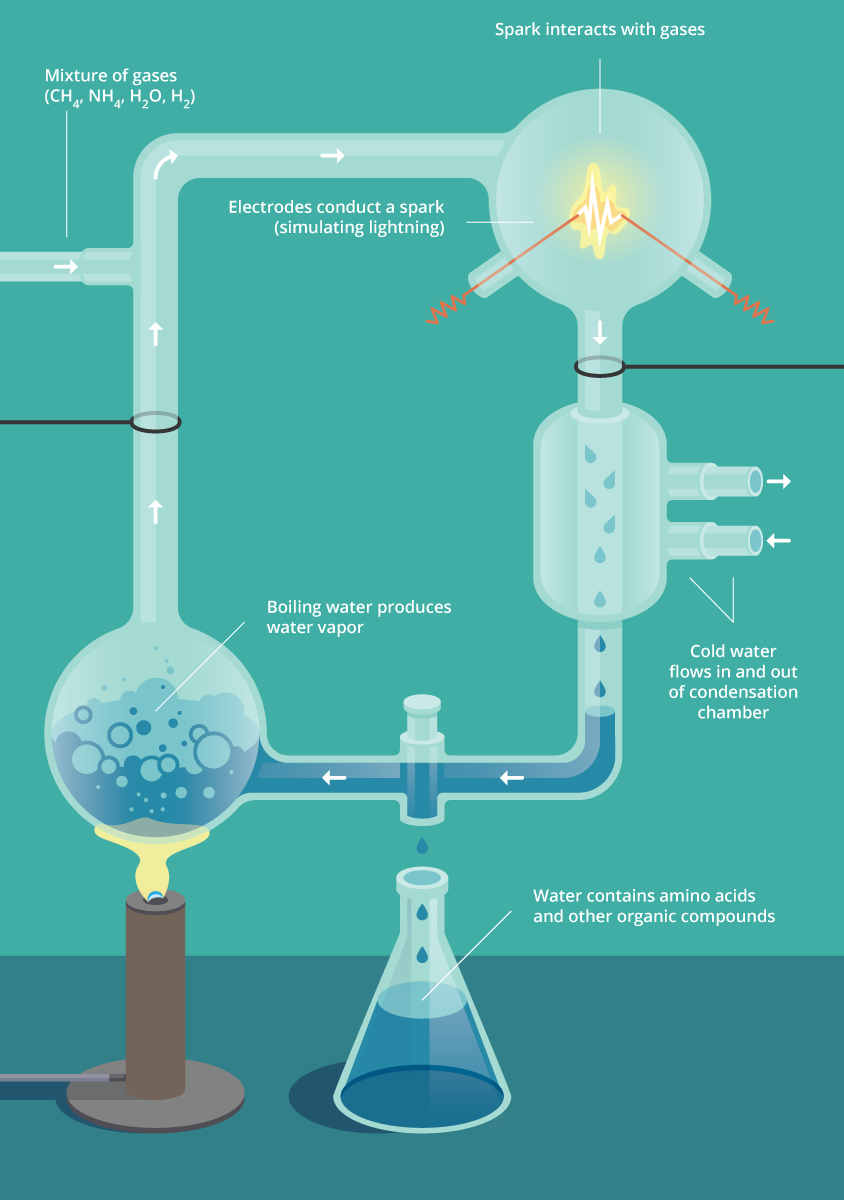 Origins Of Life I Biology Visionlearning This Diagram Shows How Electricity Is Generated Our Experiment Used A Figure 7 Miller And Ureys To Test The Oparin Haldane Hypothesis By Recreating Early Earths Atmosphere Adding Ultraviolet Light