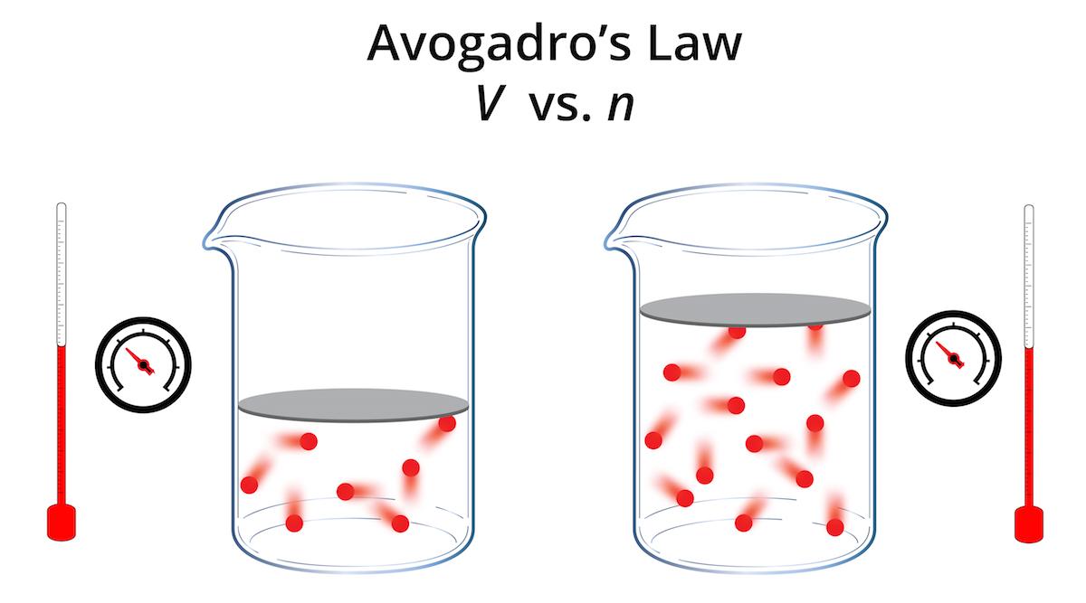 Application Gay Avogadros Law