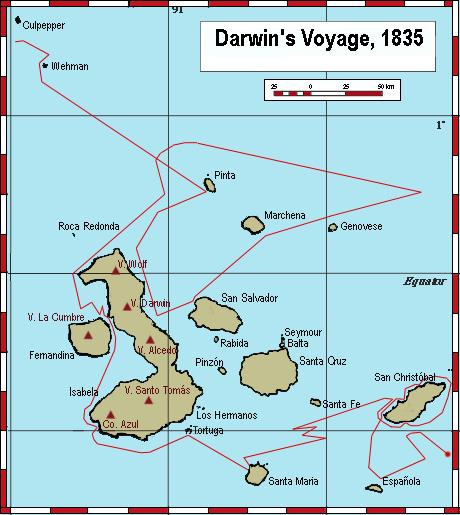 Charles Darwin I : Biology : Visionlearning