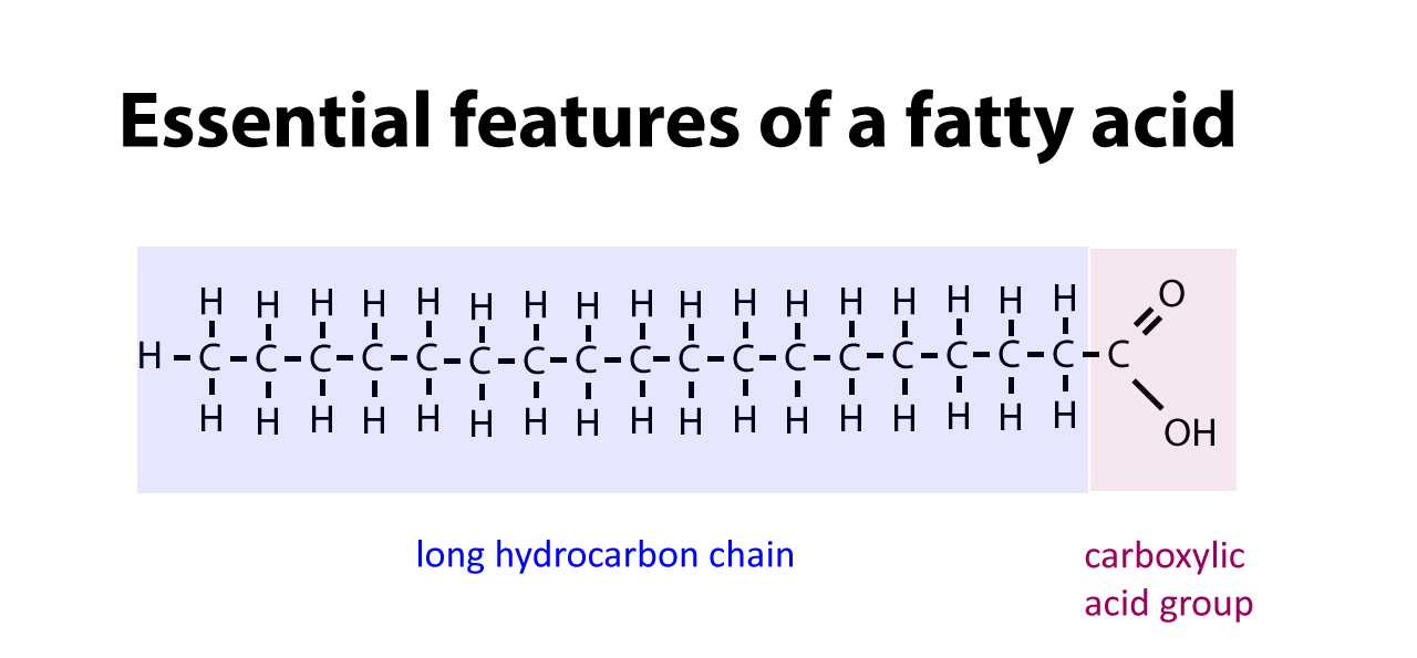 Which Fatty Acids Are Liquid At Room Temperature