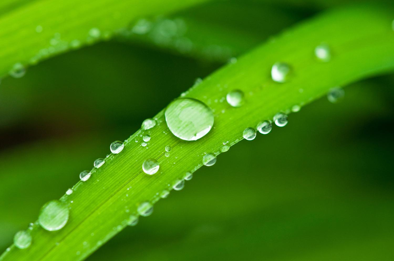 Water Adhesion Example...