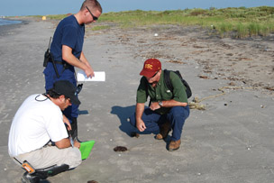 Researchers on the beach in Louisiana