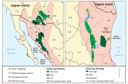 Jaguar Conservation Areas Map