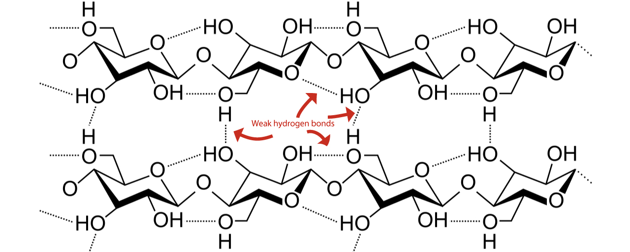 Cellulose weak hydrogen bonds