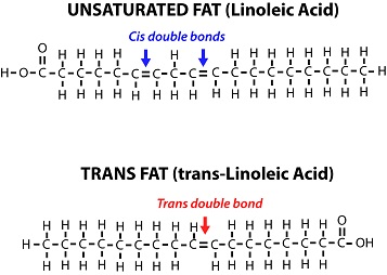 Cis vs trans double bonds