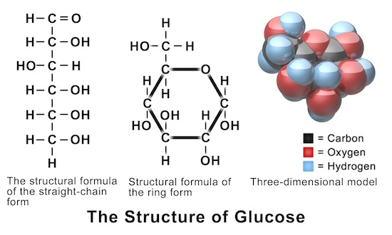 Glucose structures