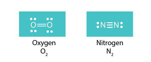 O2 and N2 Lewis structures
